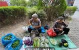 孩子买了奔驰宝马 孙媳妇还是老师……杭州小区门口摆摊卖菜老太太 真的不差钱
