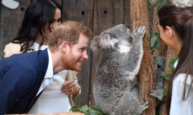 Britain's Prince Harry, wife visit a zoo in Sydney