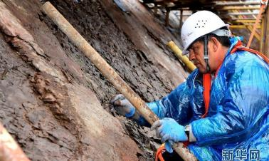 Experts from China and Greece work to preserve dinosaur footprints