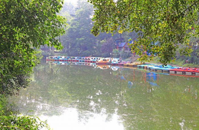 黄海海滨国家森林公园风光