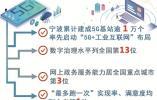 数字化改革看宁波⑩不负春风与时行 宁波数字化改革铿锵起步