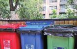 每天产生7.5万吨生活垃圾 山东生活垃圾分类明年有望立法