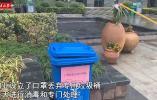 宁波记者实拍真实的武汉 这个细节值得宁波小区学习