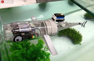 北京世界机器人大会开幕 仿生鱼亮相夺眼球