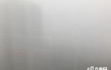 海丽气象吧∣回家过年注意 山东8个市出现强浓雾 260多个高速收费站封闭