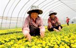 @所有江蘇人!江蘇城鎮居民今年一季度人均可支配收入 15771 元!