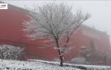 """【视频】茅山景区:红墙黑瓦映白雪 仙雾缭绕""""万树花"""""""