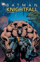 蝙蝠侠:骑士殒落