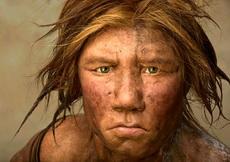 发现于1856年的尼安德特人是人类最早发现的古人类化石,也是最著名的古人类之一。