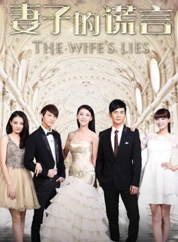 妻子的谎言 DVD版