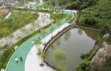 臨海上盤:打造生態綠道 共用美麗城鎮建設成果
