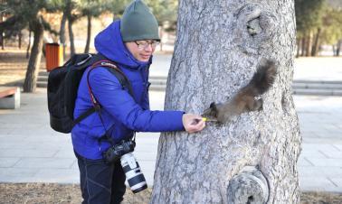 Visitors, squirrels friends in NE. China park