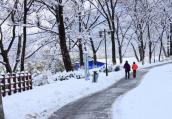 夜未眠,南京新年第一场雪里他们是最美风景
