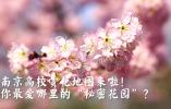 """【视频】南京高校赏花地图来啦!你最爱哪里的""""秘密花园""""?"""