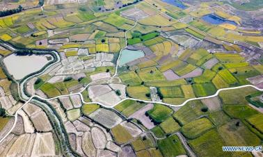 Xiaogang Village: name fixed in China's memory as start of reform