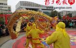 【新春走基层】狮子摆首巨龙翻飞 泰兴传统民俗闹元宵