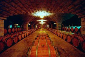 葡萄酒储存